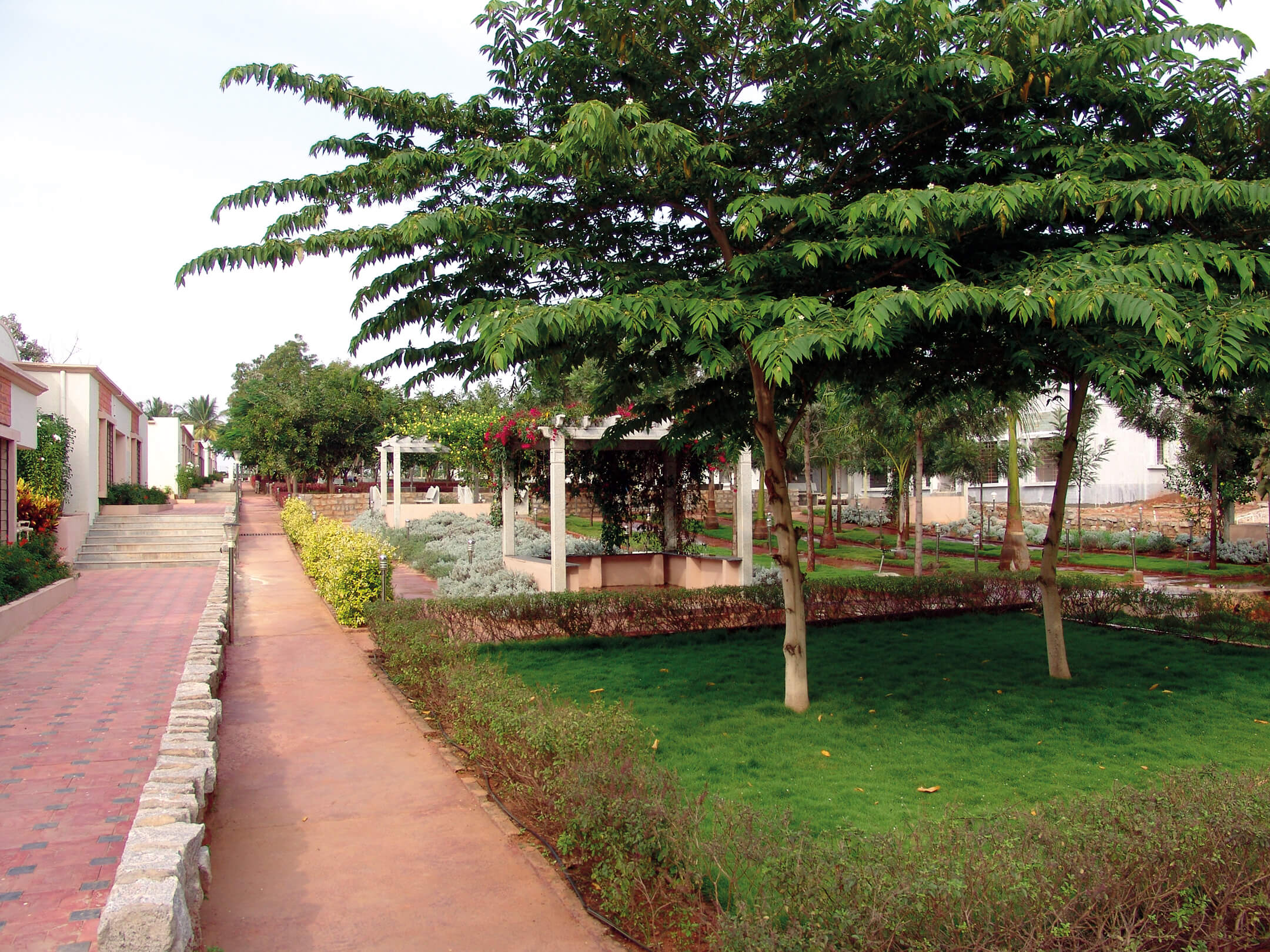 Trees and Lawns in Sharadindu - Sree Senior Homes