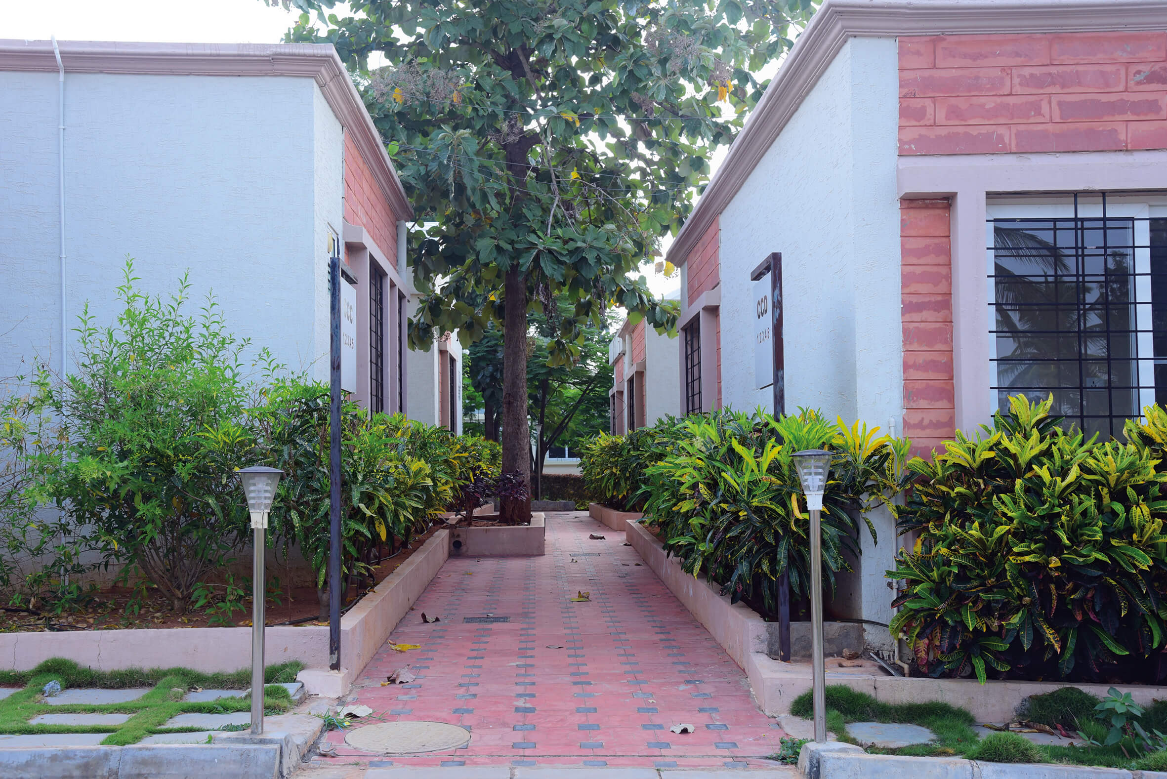 Trees for Fresh Air in Sharadindu - Sree Senior Homes